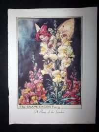Cicely Mary Barker 1955 Vintage Flower Fairies Print. Snapdragon & Chicory Fairy